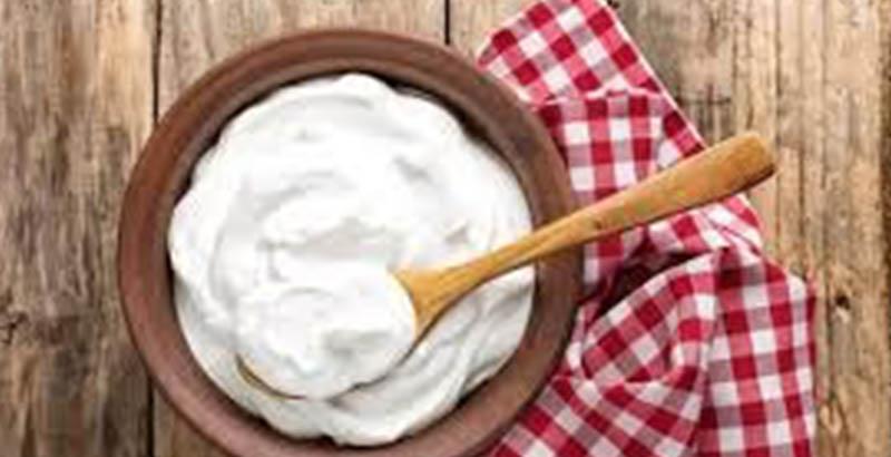 yogurth